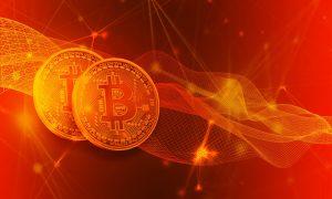 Bitcoin Trader und die Kryptosektion